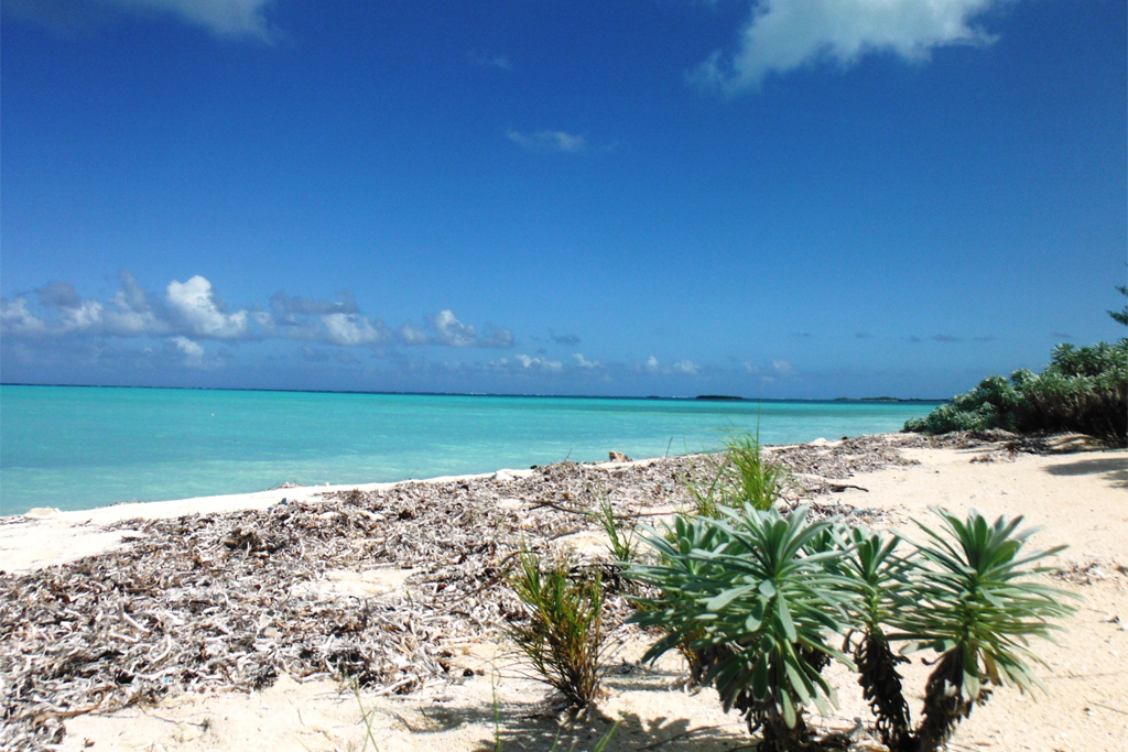 Bambarra Beach, Middle Caicos, Turks and Caicos Islands